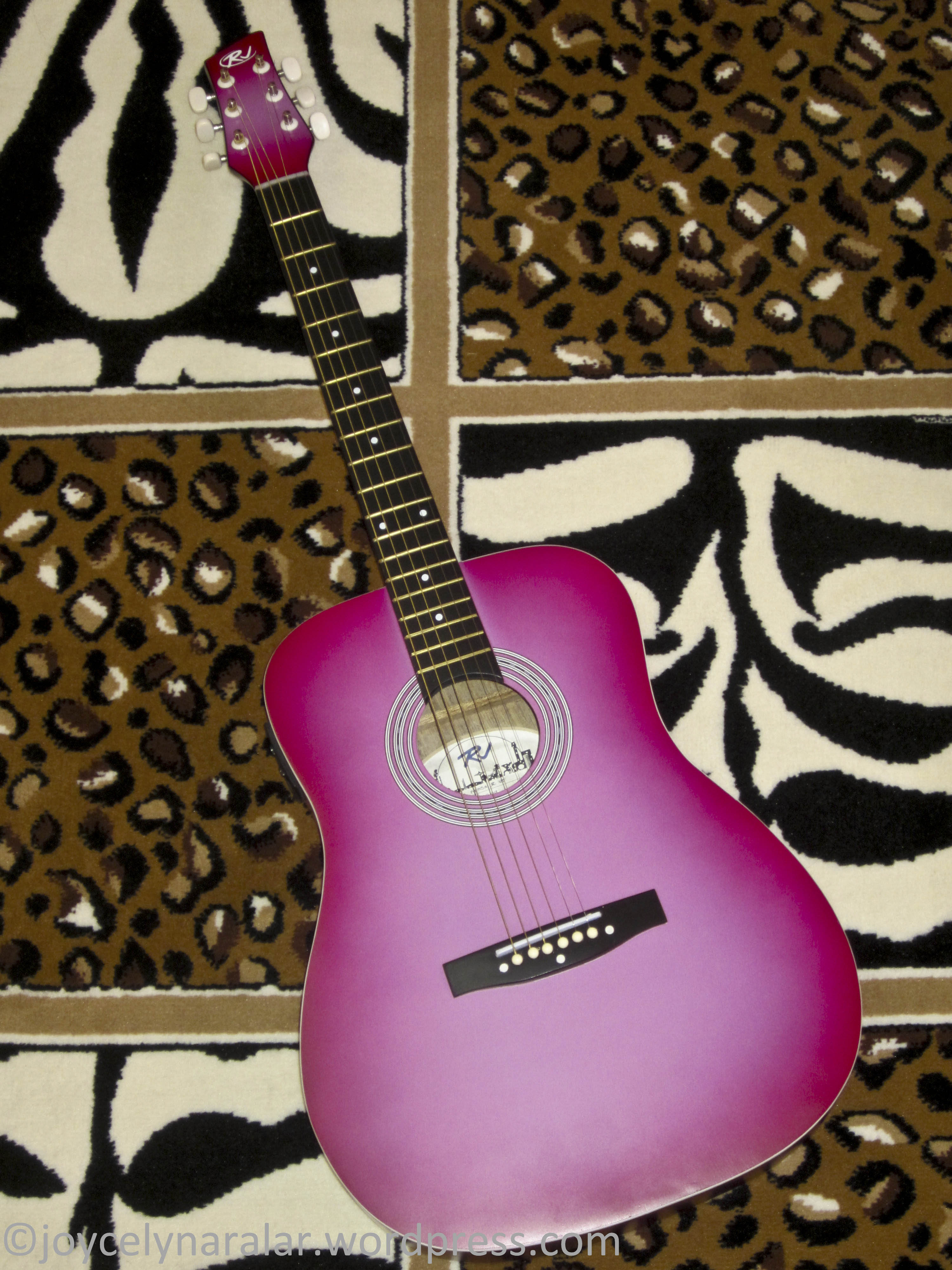 Rj Guitar Superistar And Her Universe