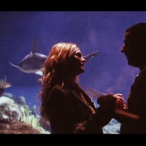 50 First Dates Photos (18)