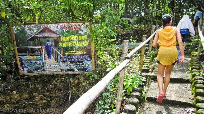 Bacolod Guimaras Iloilo Trip Day 3 (14)