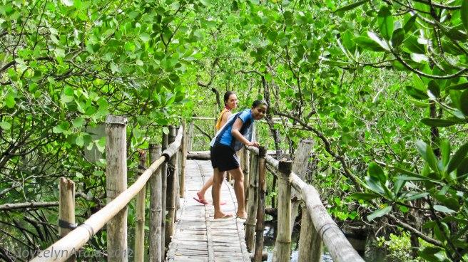 Bacolod Guimaras Iloilo Trip Day 3 (15)