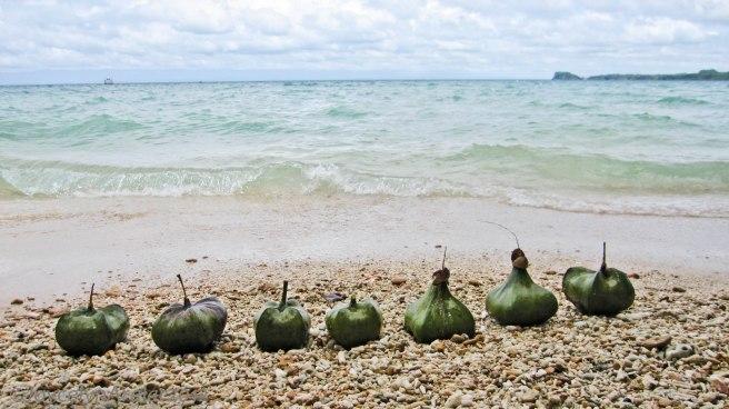 Bacolod Guimaras Iloilo Trip Day 3 (25)