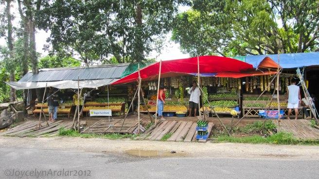 Bacolod Guimaras Iloilo Trip Day 3 (42)