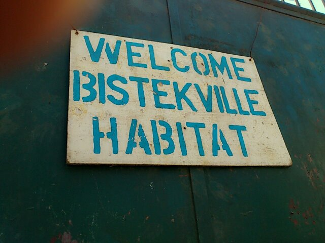 Habitat for Humanity (2)